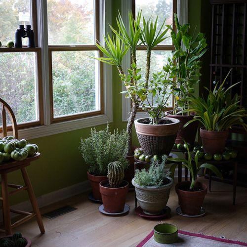 50 best jardin de fée images on Pinterest Small gardens, Fairies