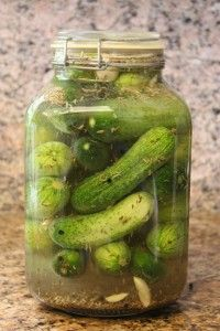 Dill Pickles  20-25 Pickling Cucumbers, thoroughly washed and scrubbed  1/3 cup Kosher Salt  ½ – 1 Bulb Fresh Garlic, cloves removed and peeled  3 tbls Dill Seed  1 – 1 ½ tsp Black Peppercorns  2 tbls Fennel Seed  1 tbls Caraway Seed  1 – 1 ½ tsp Whole Cloves  White Vinegar  Water    In a 2-gallon glass jar, add the cucumbers all the way up to the top.  Pour in remaining salt and spices.  Fill the jar ½ – 2/3 full with white vinegar; finish filling with water.  The amount of vinegar you use is up to you.  If you want a super strong pickle, leave out the water and use only vinegar.  If a slightly more mild flavor suits you, then use the ½ to 2/3 rule.Seal lid making sure there are no leaks.  Shake to distribute ingredients. Refrigerate for 3-6 weeks, giving the jar a good shake every 2-3 days, until they are as potent as you like.Black Peppercorn, Dill Pickles, Pickles Cucumber, Dill Seeds, Honey Granola, Fennel Seeds, Caraway Seeds, Tsp Black, Simple Honey