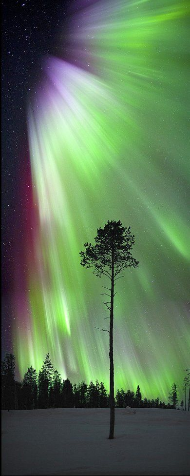 Aurora Borealis // by Antony Spencer via Flickr