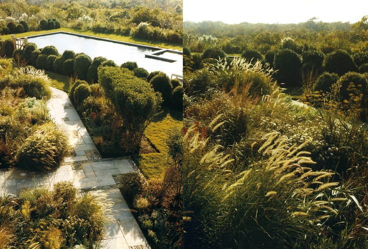 89 best images about Water efficient gardens on Pinterest