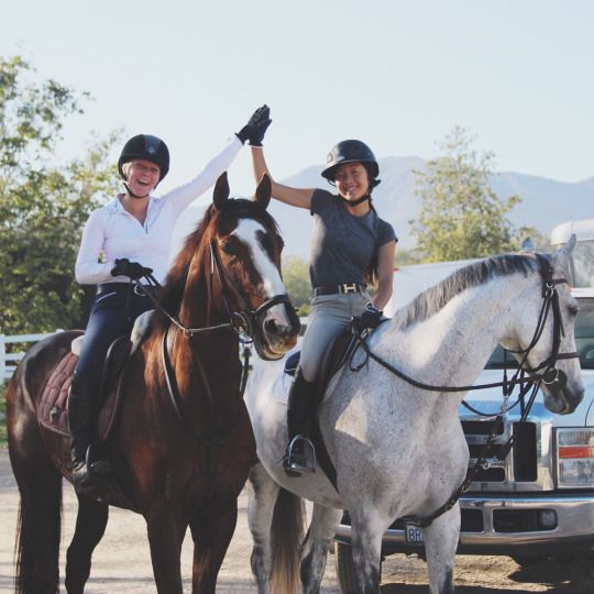 Fearless Equitation