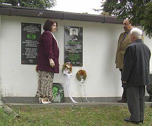 Nanovfszky György – Wikipédia