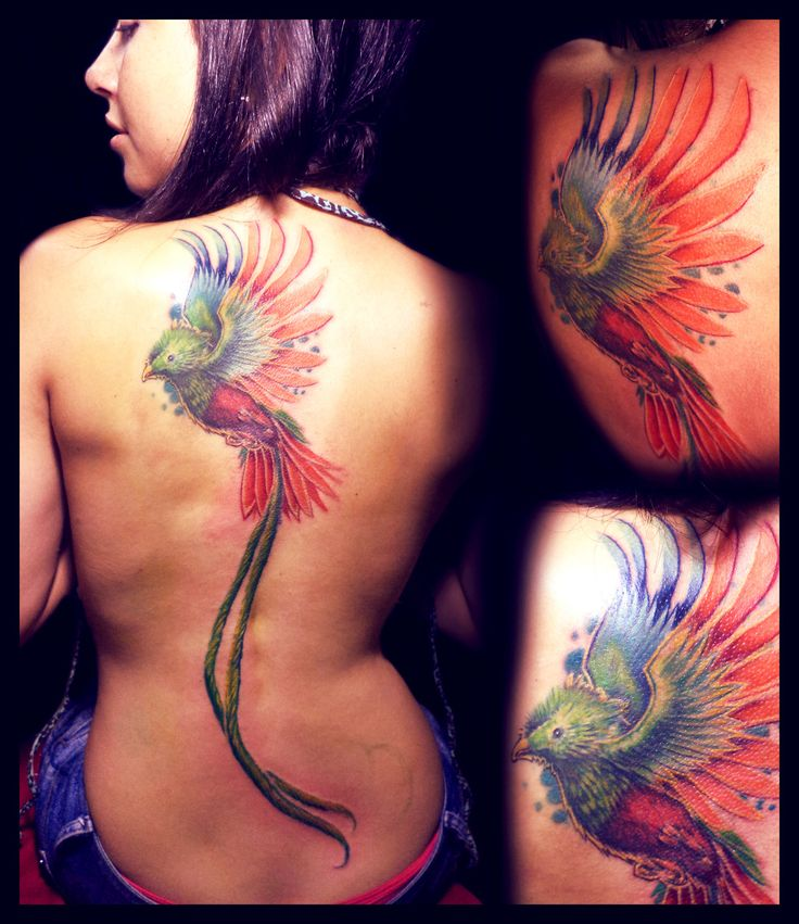 I know it's not quite a phoenix, but I LOVE it!  Fresh Quetzal Tattoo by KhristianDeMedich.deviantart.com on @deviantART