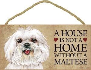 Maltese: Houses, Dogs, Beds Pet, Amenities, Maltese Pets, So True, Art Maltese, Baby, Maltese Signs