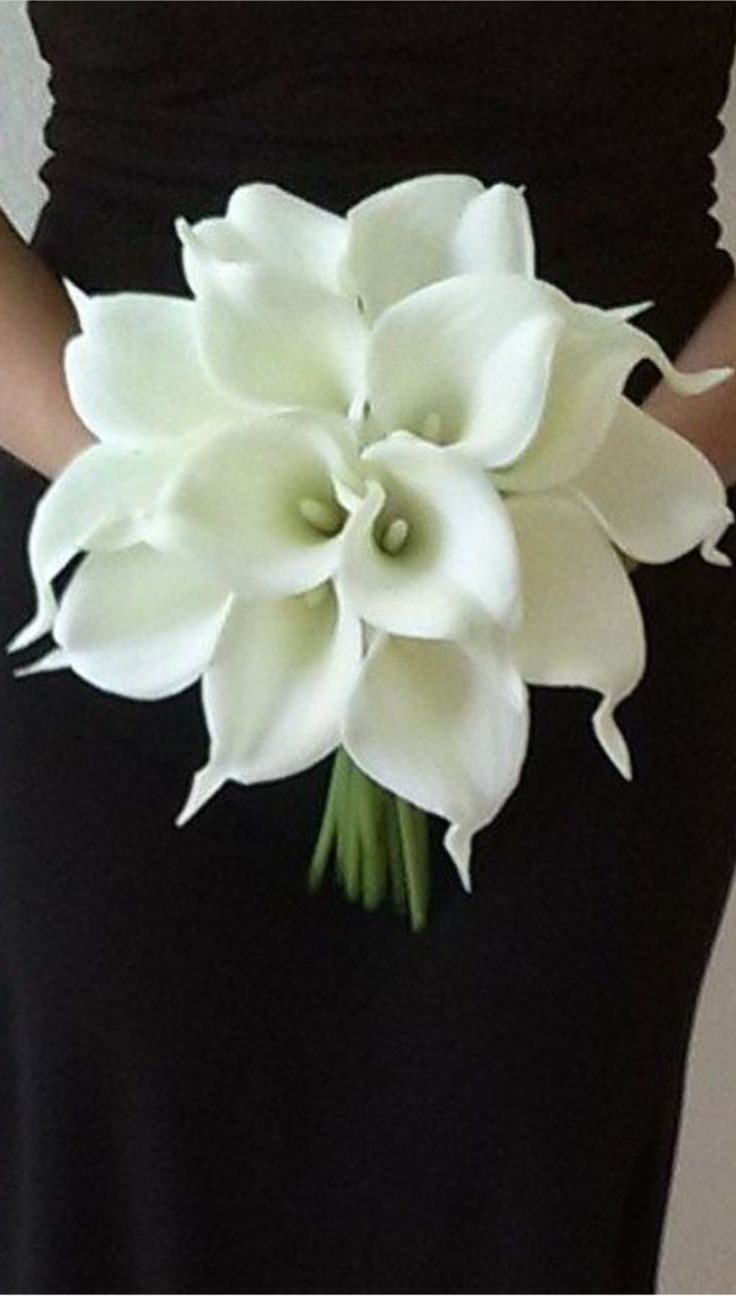 86 best calla lily wedding theme images on pinterest wedding ideas 86 best calla lily wedding theme images on pinterest wedding ideas wedding bouquets and dream wedding izmirmasajfo Images