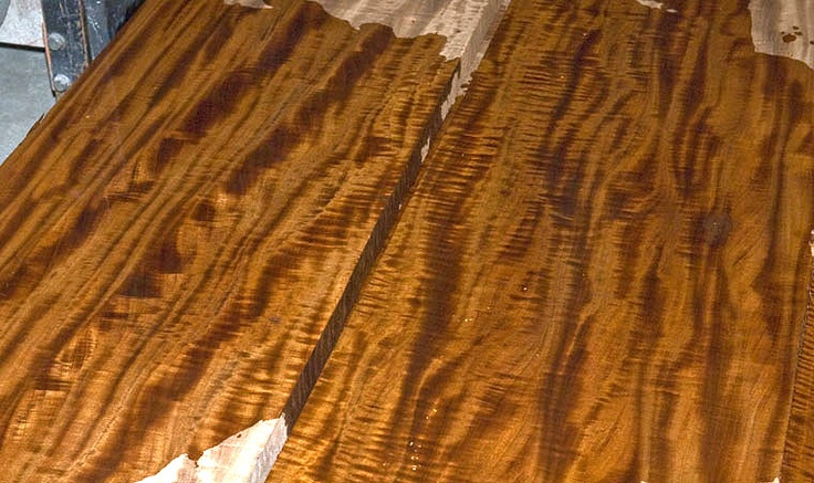 Mahogany Wood Lumber ~ Best wood species images on pinterest woodworking
