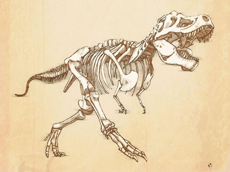 T-Rex drawing skeleton