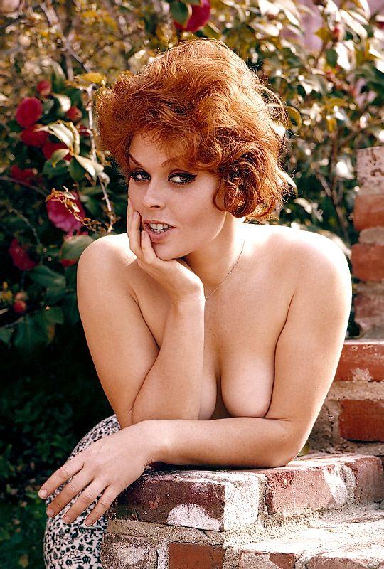 Vintage tits pam brown 9