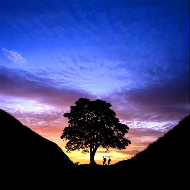 Sycamore Gap, Hadrian's Wall, Northumberland, England by Roger Clegg  Northumberland National Park Authority – Best image