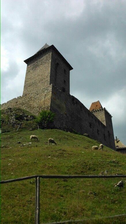 Sheeps around a castle