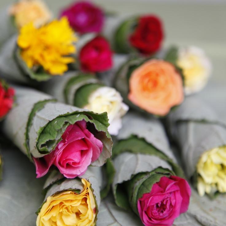 Smukke roser i svøb
