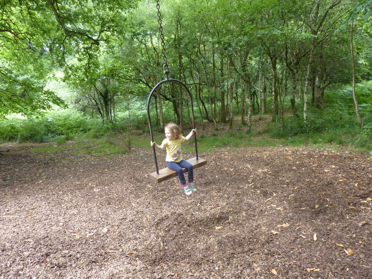 Sculpture trail in the Forest of Dean