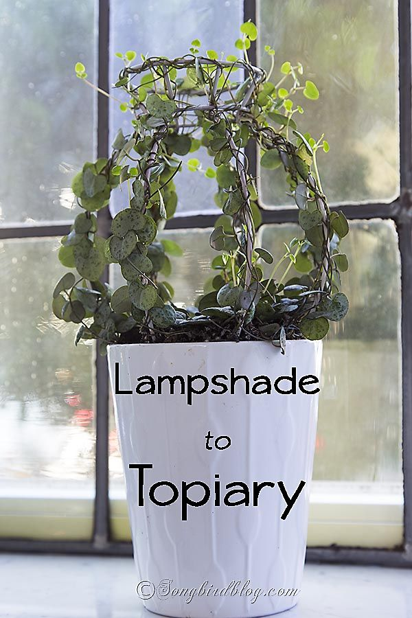 Topiaries in all shapes and sizes are popular decorating items. See here how to make the base for a topiary from an old thrifted lampshade.