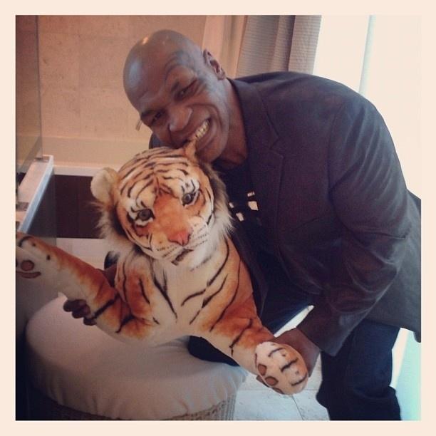 Картинки, тайсон с тиграми картинка