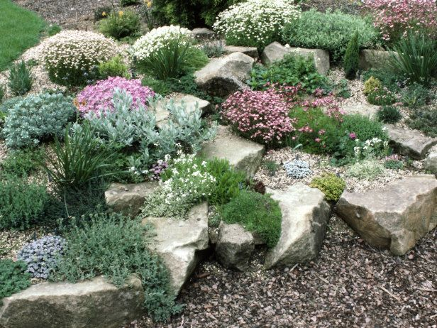 Rock Out In Your Own Rock Garden Http Www Hgtvgardens Com Garden Types Tips For Planting A Rock Garden Landscaping Rock Garden Design Rock Garden Plants