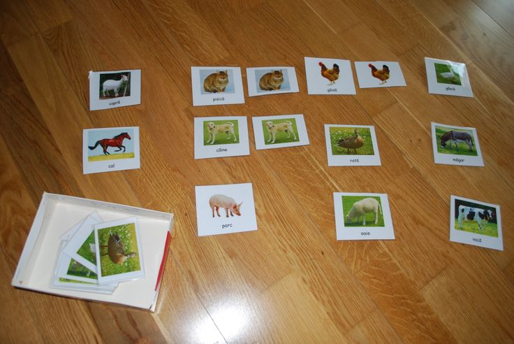 Matching pictures of farm animals