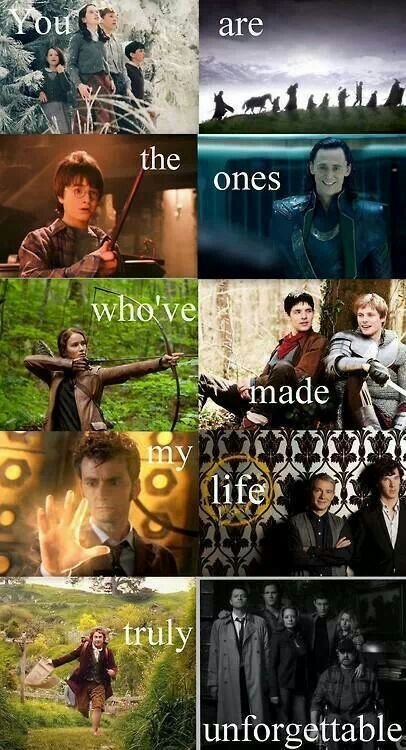 Thank you, fandoms. Narnia (ehh...), LOTR (yay!), Harry Potter (yay!), Avengers, Hunger Games, Merlin (not watched it yet), Doctor Who (in progress), Sherlock (yay!), The Hobbit (yay!) and Supernatural (not watched it)