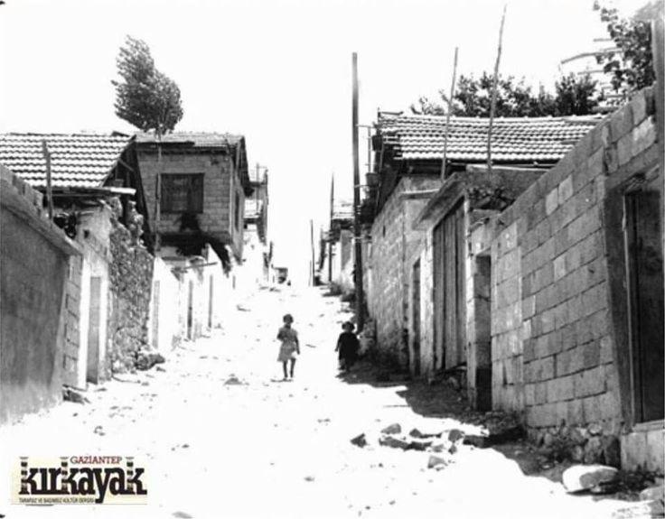 Kırkayak