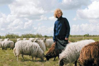 Claudy Jongstra with her sheep.