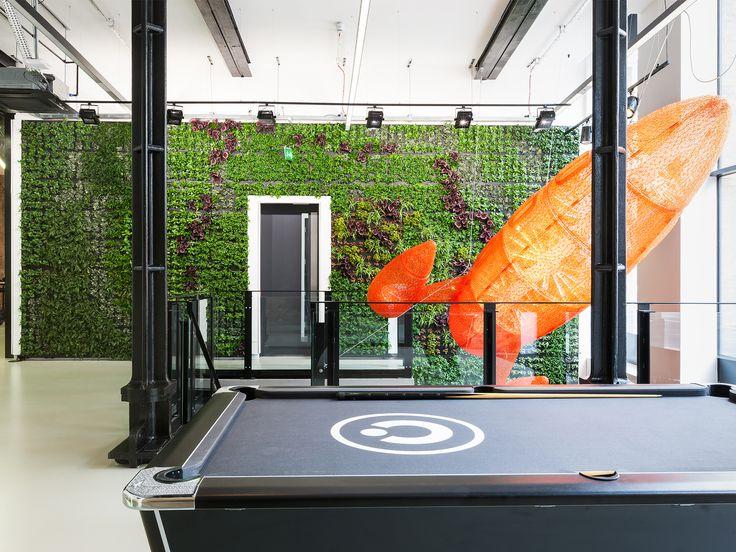 Oficinas Capco and Bold Rocket / Oficina de Arquitectura D+DS