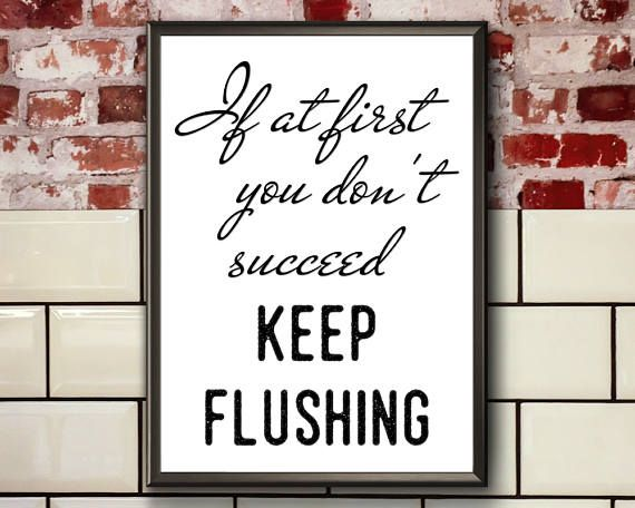 Funny Toilet Quote  If At First You Don't Succeed  Funny