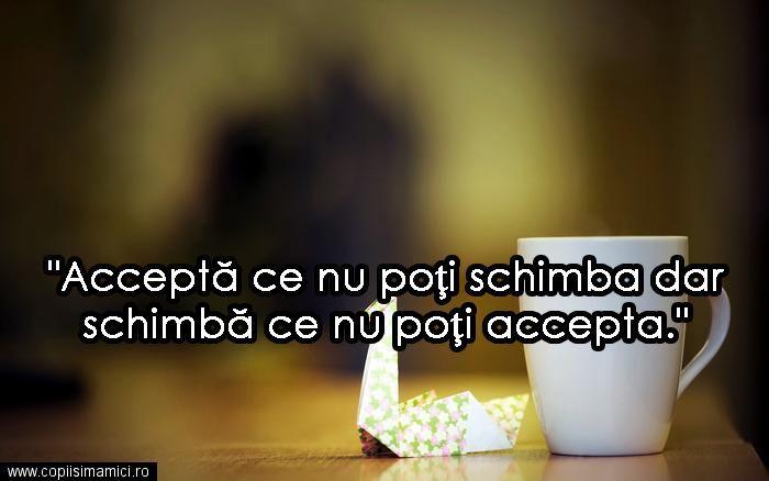 Accepta Ce Nu Poti Schimba #quote #quotes #citat #citate #lifequotes #wisdomquotes