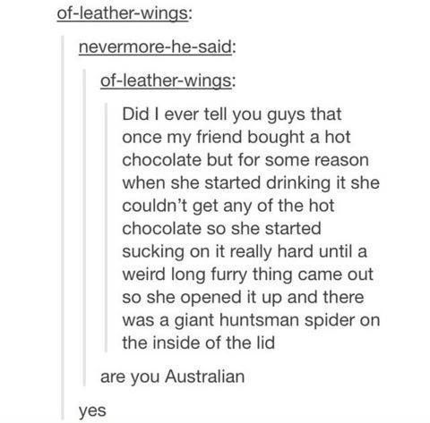 The drinking habits of local fauna. | 22 Important Lessons From Tumblr About Australia