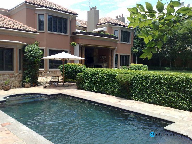Swimming Pool Backwash : Swimming pool filter maintenance tips guide