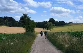 Alles over wandelen of het nu kort of lang is. http://www.tweevoeter.nl