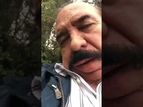 #Despacito with snoring - Despacito con ronquidos - YouTube
