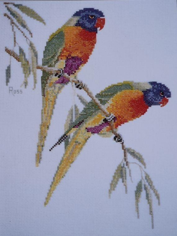 Rainbow Lorikeets Graeme Ross Australian by GoldenThreadSupplies