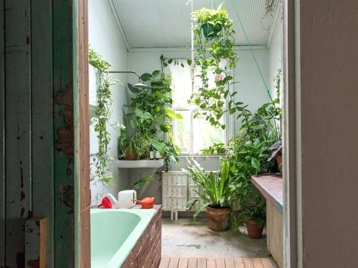 Image Result For Showers With Artificial Plants Artificialplantslivingroomcoffeetables Artificial Bathroom Plants Artificial Plants Artificial Plants Outdoor