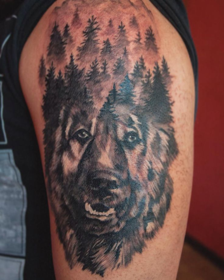 В память о любимой собаке 🐕 #тату #тлт #татуировка #собака #кавказскаяовчарка #овчарка #лес #tattoo #tatts #tattooer #dog #tlt #forest #black