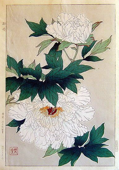 White Peony, by Kawarazaki Shodo (Japanese, 1899-1973), 1950 -- Colour woodcut, artist's seal, titled, dated and publisher in Japanese in block around image
