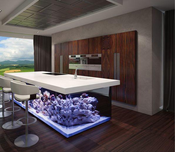 Фото из статьи: Аквариум на кухне или кухня в аквариуме: потрясающий пример необычного декора