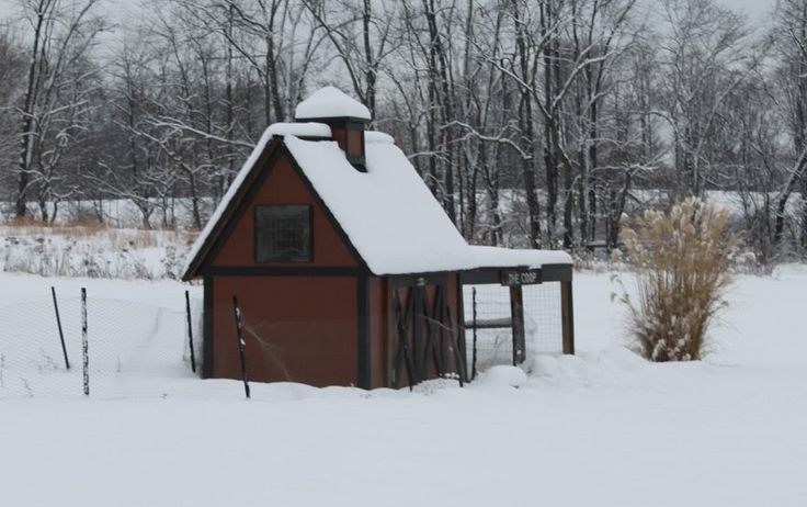Backyard Chickens In Winter : Keeping Chickens warm in Winter~ a leanto from my house already