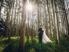 Laura & Tim's Rosemount Estate Wedding