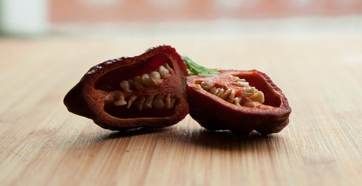 https://flic.kr/p/ZMWiSW | Capsicum Chinense - Apocalypse Scorpion Chocolate Pepper | This pepper is cut in halves (make sure you use gloves since it is super hot). It is a Capsicum Chinense type of chilli pepper named Apocalypse Scorpion Chocolate (brown in color).   Use for your blog, article, or project, but attribute to the Chili Life (www.thechili.life).
