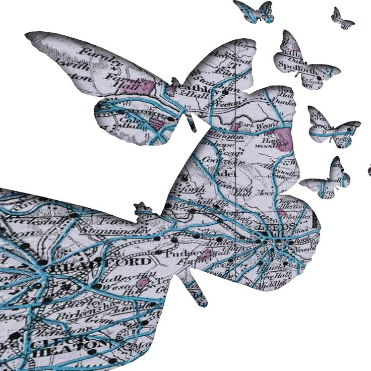 Butterfly personalised with local town map print. Cute gift. www.monkeyofthenorth.co.uk