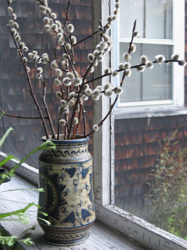 Pussy flower vase