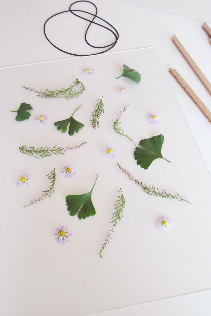 DIY skab smukke mønstre af planter og blomster til dine rammer