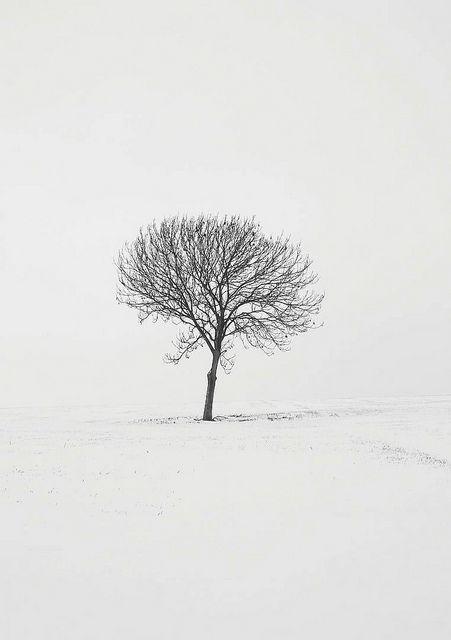 stark winter.