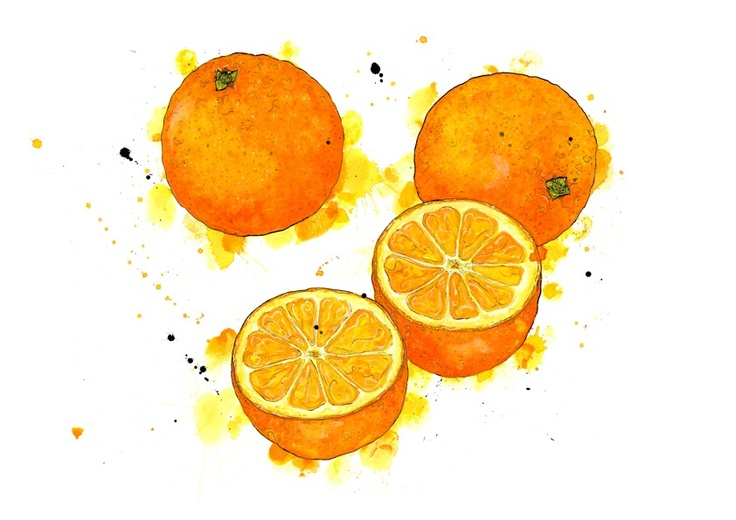 Orange by Emma Dibben. The cross section and bright colours that she uses on the painting of the orange brings the shape and different tones on oranges out and looks really effective.