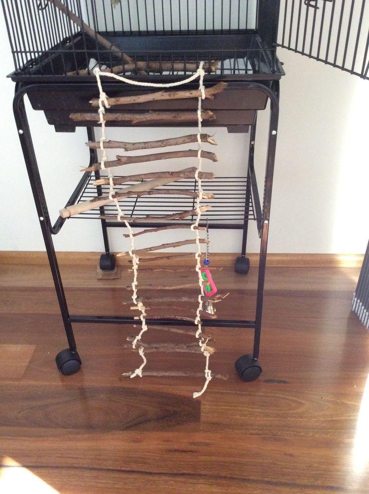 Homemade bird ladder
