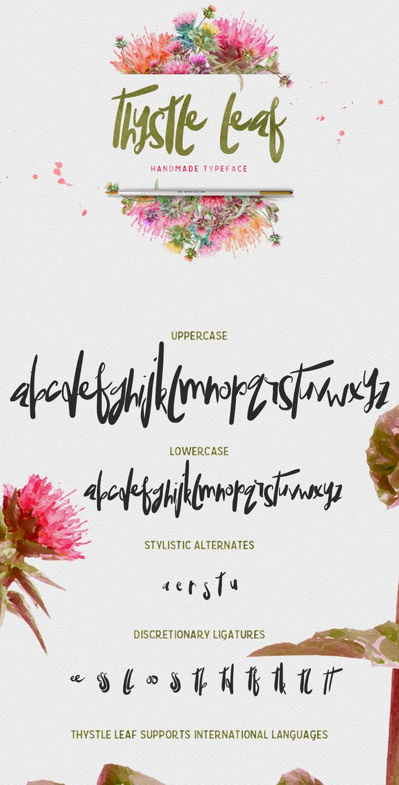 Thystle Leaf Typeface -20% OFF by Creativeqube Design. Hand-painted, unique semi-script font. Pretty!