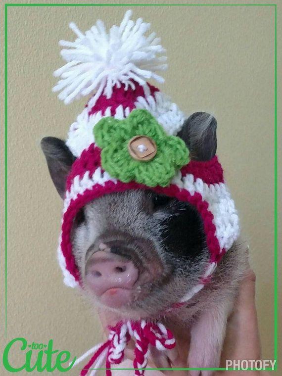 Ce mignon petit bonnet s'adaptera petits animaux et 2 15lbs. Il est rose et blanc rayé avec oreillettes et tresses qui nouer sous le menton et un petit pompon. Il est livré avec 3 fleurs interchangeables dans n'importe quelle couleur que vous aimez. Il a deux fentes pour les oreilles de