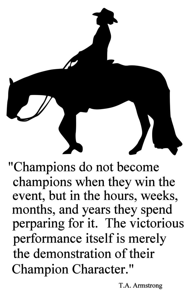 "For the Champion in your family, or as inspiration for your team. This large decal measures approx. 28 X 45 inches. Quote reads ""Champions do not become champions when they win the event, but in the h"