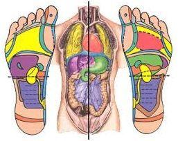 Reflexní masáže plosky nohou :: medela