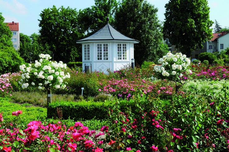 der rosengarten ber 200 rosensorten haben ihren ursprung in bad langensalza 2001 wurde der. Black Bedroom Furniture Sets. Home Design Ideas