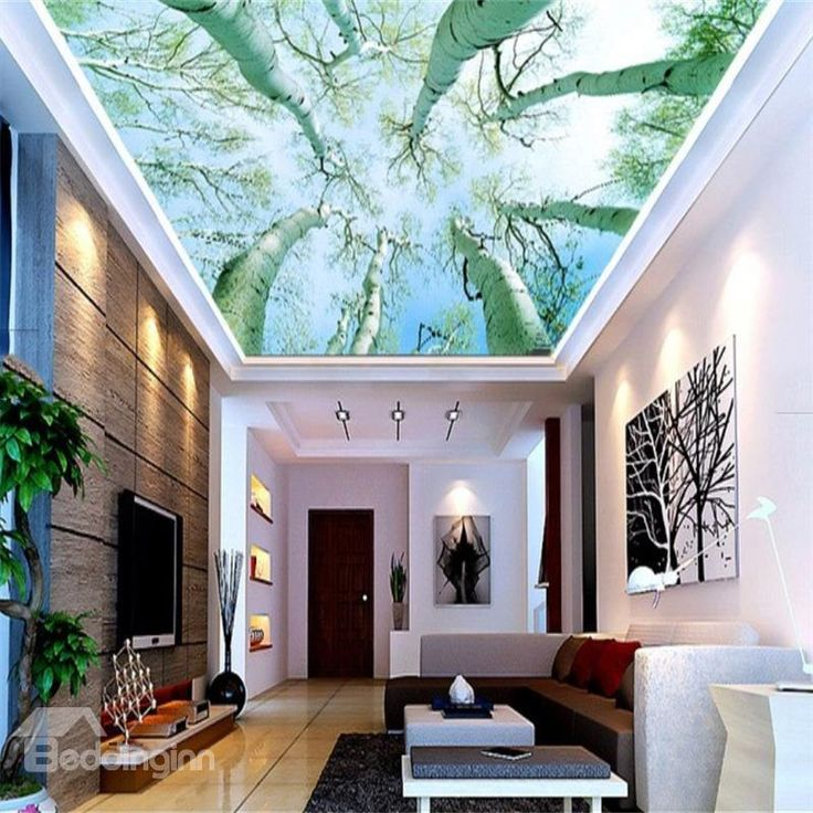 Best 25 ceiling murals ideas on pinterest invisible for Constellation ceiling mural
